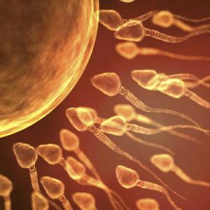 Holistic Acupuncture fertility